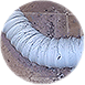 Flexible Plastic Clothes Dryer Vent Pipe