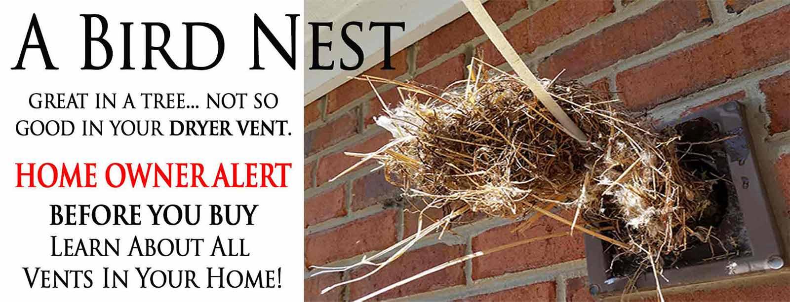 Bird S Nest Removal Bird Covers Vent Screens